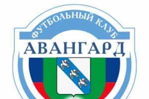 Курские спортивные команды продолжают тренировки, несмотря  на досрочное завершение сезона
