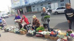 В Курске провели рейд по местам незаконной уличной торговли