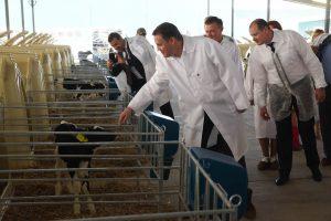 Министр сельского хозяйства осмотрел курский животноводческий комплекс