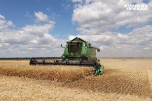 Аграриям окажут помощь в Центре компетенций в агропромышленном комплексе