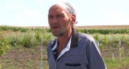 Житель Курской области посадил сад в память о погибших на войне