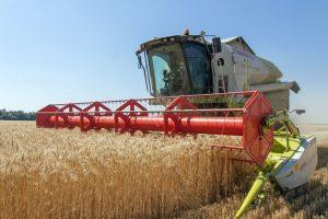 В Курской области продолжается уборка зерна