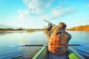Особенности курской охоты