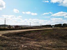 В Курской области не ведется строительство свинокомплексов на двух площадках