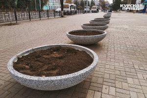 На улице Ленина в Курске появились новые малые архитектурные формы