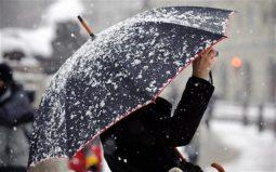 В Курске ожидается мокрый снег