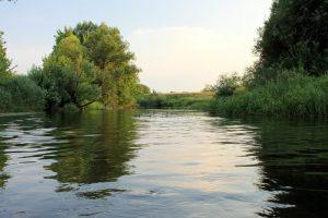 На водохранилище реки Тускари превышения предельно допустимой концентрации вредных веществ не зафиксировано