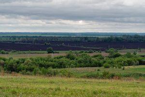 Курская область вошла в десятку самых экологичных субъектов