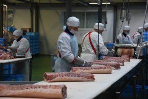 Курская область пятая в России по производству мяса