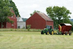 Курские фермеры могут получить субсидии