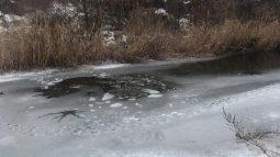 В Курской области будут штрафовать за выход на неокрепший лёд