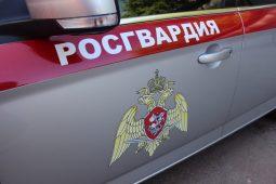 На новогодних каникулах в Курске задержали свыше 140 правонарушителей