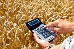 Курским аграриям бесплатно помогут составить бизнес-план