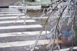 В Курской области ожидаются туман, снег и гололедица