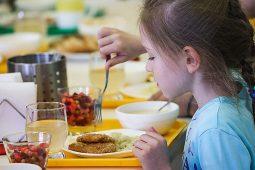 Курским школьникам предлагают снять видеообзор на школьный обед