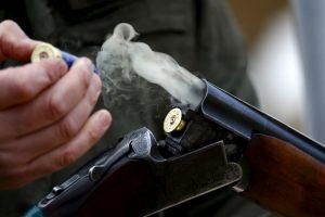 Курянин без разрешения на охоту застрелил лосиху