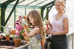 Готовимся к посеву  и выращиванию рассады