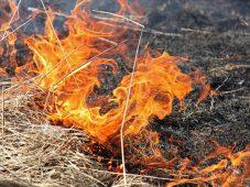 За сутки в Курской области произошло 27 пожаров