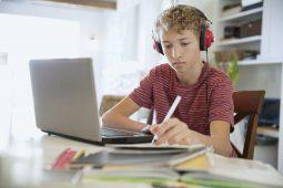 Школы Курской области переходят на онлайн-обучение