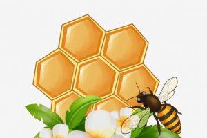 Переменчивая погода укоротила курским пчелам рабочий день