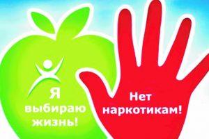 Доклад о наркоситуации в Курской области в 2019 году
