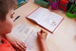 Курские школьники занимаются в онлайн-режиме