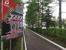 В одном из студенческих городков Курска появилась новая аллея