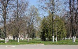 В Курске в парке Железнодорожников появится новое освещение