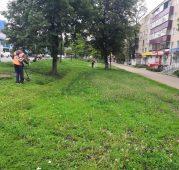 В Курске покосили траву на 240 тысячах квадратных метров