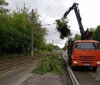 В Курске в микрорайоне КЗТЗ вырубили дикую поросль