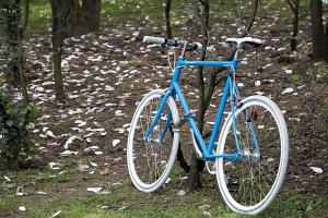 Куряне все чаще лишаются велосипедов из-за беспечности