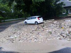 В Курске во время дождя падали деревья и тонули автомобили