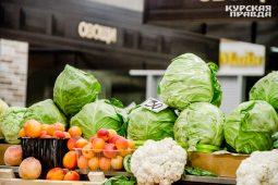 В Курске готовятся к открытию фермерского рынка