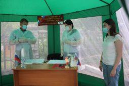 В Курске организовано голосование на придомовых территориях