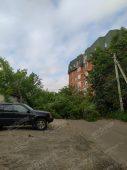 В центре Курска упавшее дерево перегородило проезд