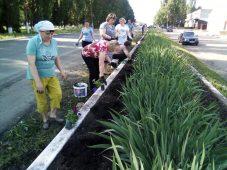 В Курске подвели итоги акции «Чистота начинается с себя»