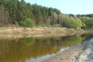 Житель Курской области незаконно приватизировал береговую линию реки