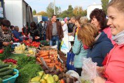 В Курске пройдет сельскохозяйственная ярмарка «Осень-2020»