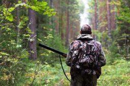 Более 120 охотничьих угодий Курской области внесены в реестр недвижимости