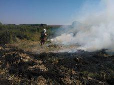 В Курской области 14 раз горели поля с урожаем