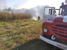 В районах Курской области установили пятый класс пожарной опасности
