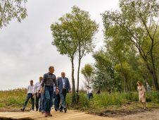 В четырех городах Курской области появятся новые общественные пространства