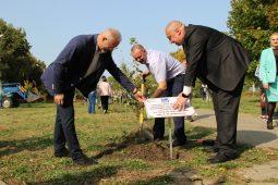 В Курской области появилась Аллея доноров