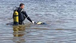 В Курской области утонул 41 человек