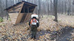 В Курской области проводят профилактику бешенства и чумы свиней