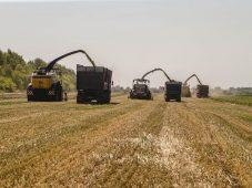 В Курской области собрали рекордный урожай за всю историю региона