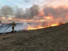 В Курской области за минувшие сутки 7 раз горела трава