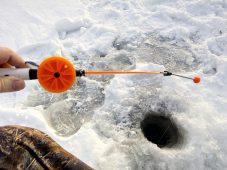 Первая встреча курских рыбаков закончилась резней