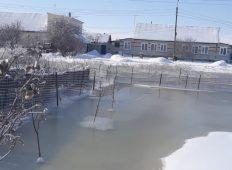 В Курской области поселок Прямицыно затопили нечистоты
