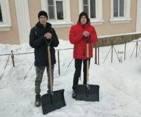 В Курске волонтеры расчистили ветерану двор от снега